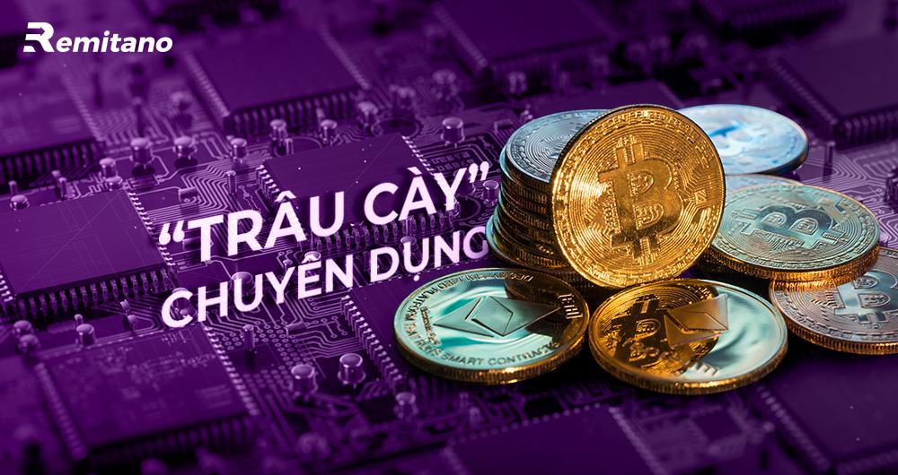 xuat xu cua cay buy bitcoins
